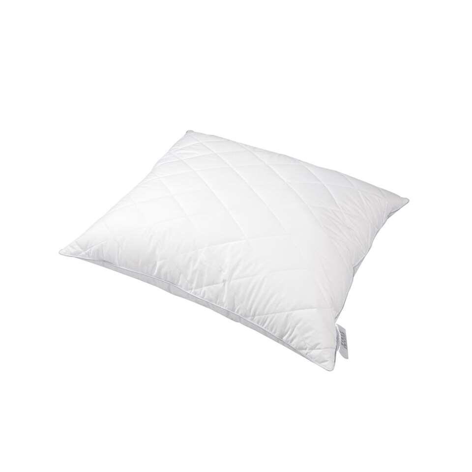 Polydaun hoofdkussen First Cotton 900  gram - 60x70 cm