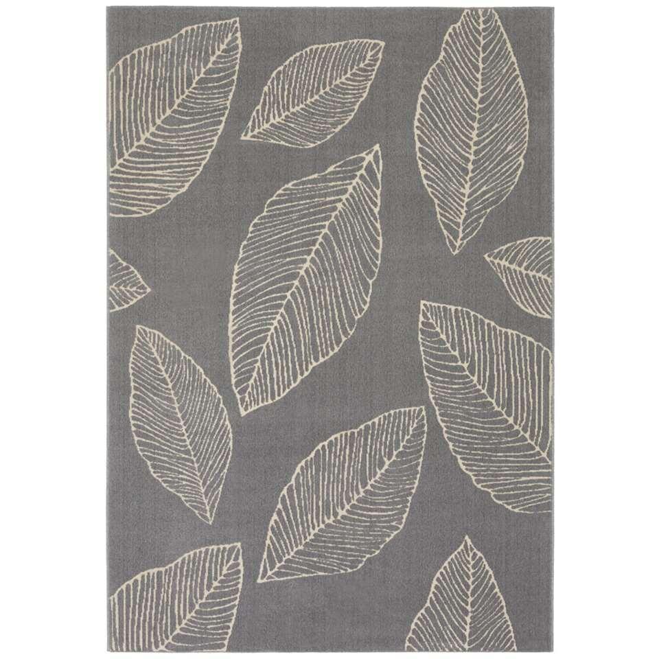 Vloerkleed Potenza - grijs - 200x290 cm