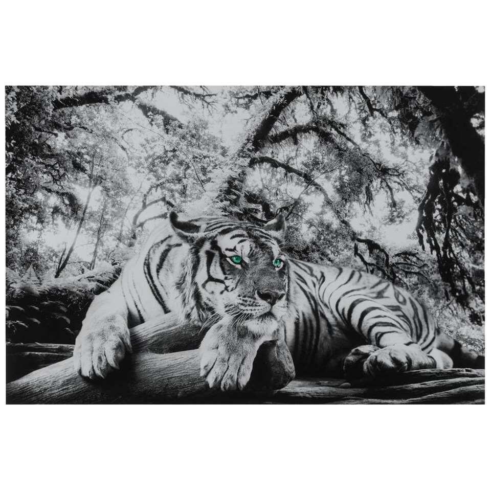Decopaneel Tijger - zwart/wit - 90x60 cm
